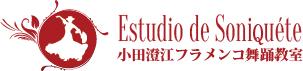 小田澄江フラメンコスタジオ